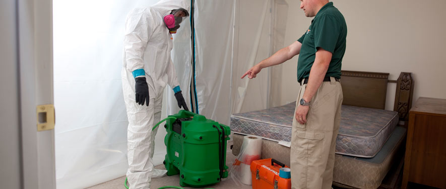 Port Charlotte, FL mold removal process